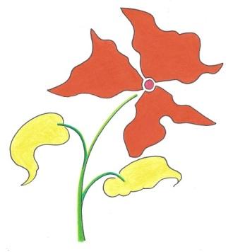 Steven - drawing - flower--1