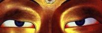 Tibetan eyes