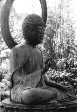 buddha - goldengate park